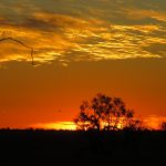 Travelling to Outback Queensland