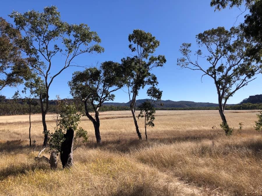 Marlong Plain Mount Moffatt Queensland